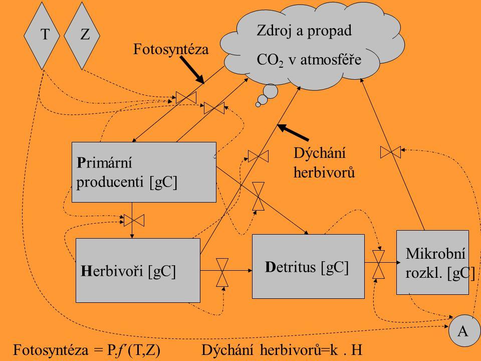 Zdroj a propad CO2 v atmosféře. T. Z. Fotosyntéza. Primární producenti [gC] Dýchání. herbivorů.